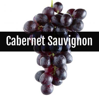 wijn gemaakt van cabernet sauvignon